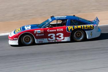Newman Sharp Racing Nissan by SharkHarrington