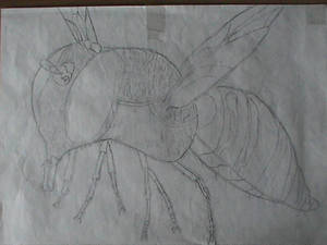 My old sketchs (2012) - 'Wasp'