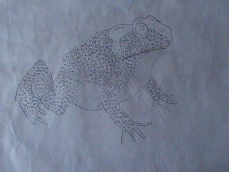 My old sketchs (2012) - 'Toad'