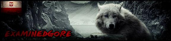 New forum signature - Wolf 2016