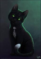 Gentleman Cat by Linzu