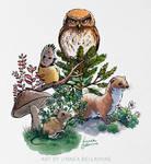 Little Forest Animals