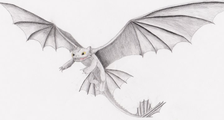 Toothless Drawing