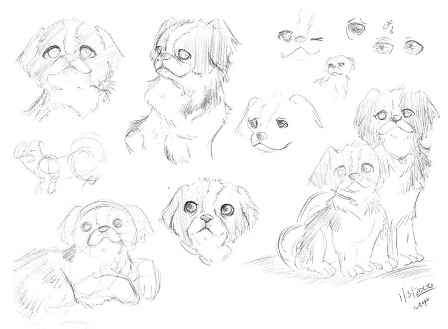 Puppies Sketch by yanagi-san on DeviantArt