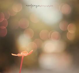 flowers of december 3 by ndjengs