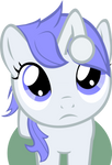 Curious Filly Discentia