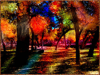 Rainbow Forest by TwilightxGirl