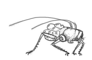 Eggbug