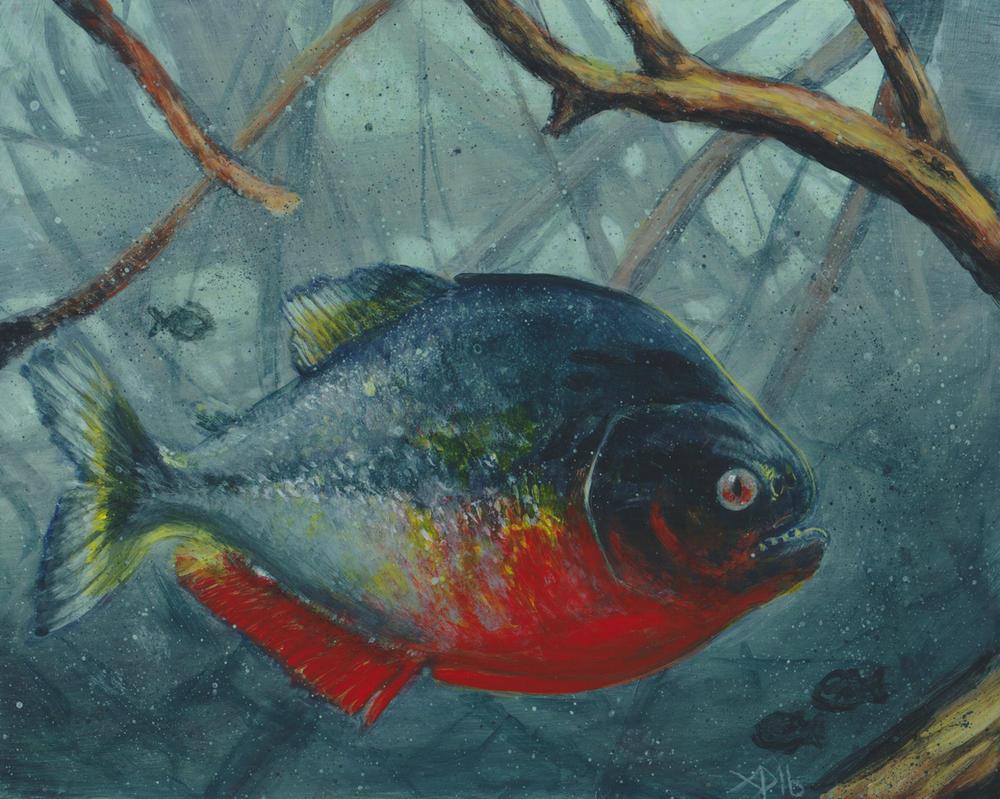 Piranha! by brucethebandit