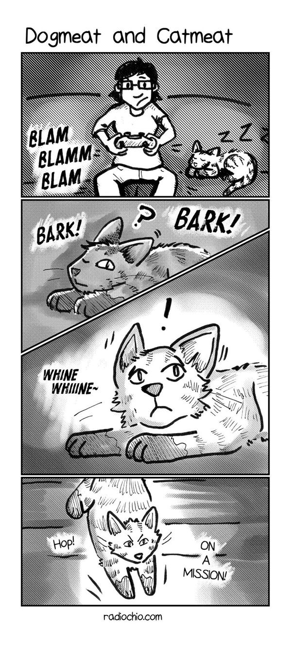 Dogmeat and Catmeat (part 1) by bugbyte