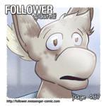 Follower 4.37