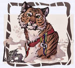 Chinese Tiger