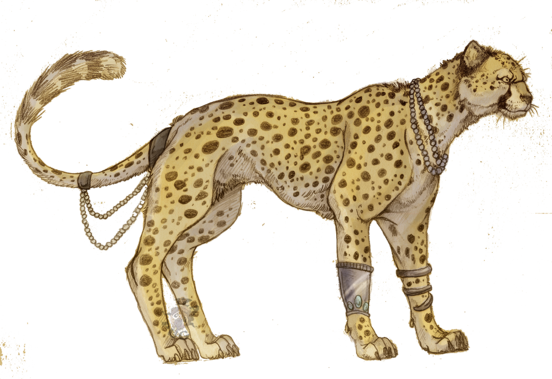 Image Result For Baby Cheetah Coloring