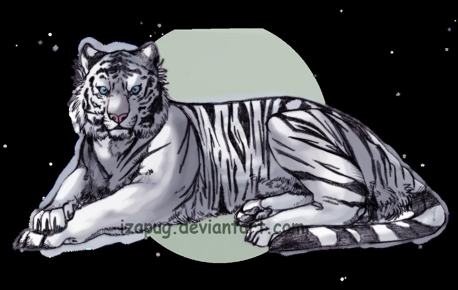 White Tiger v2 by IzaPug on DeviantArt