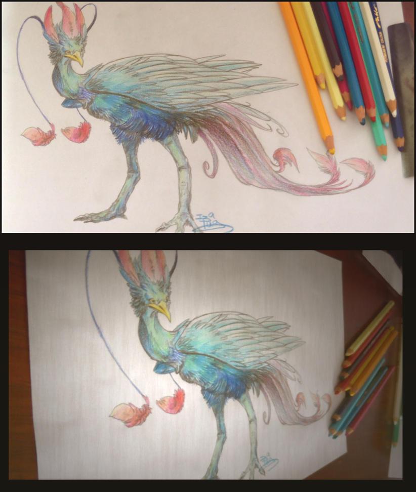 Phoenix by IzaPug