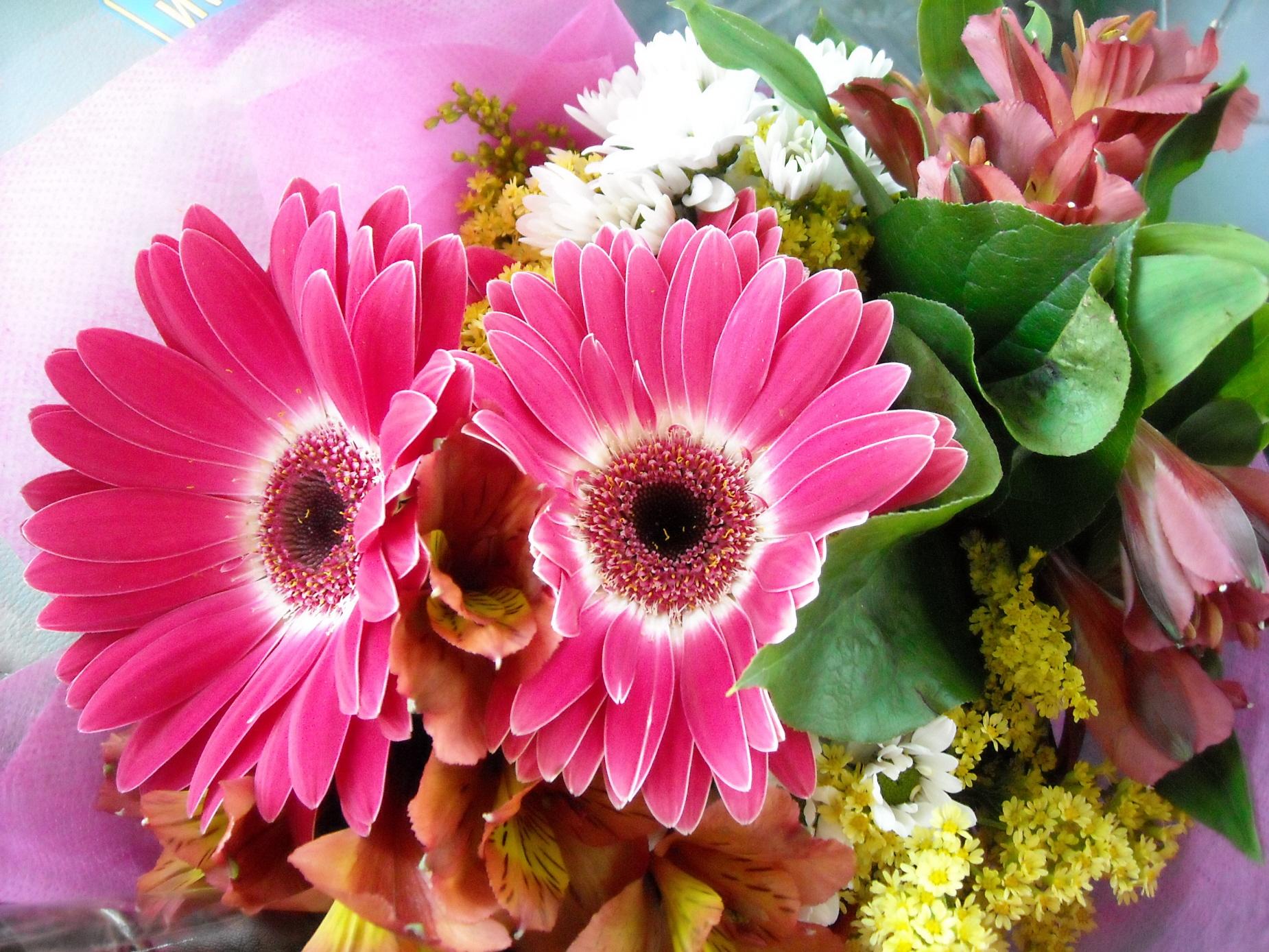 Bouquet Of Flowers By Marymiyavi