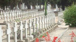 dEY AL DIED FOR US WWII RESPCt by dejan91lp