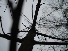 Day in the dark by dejan91lp
