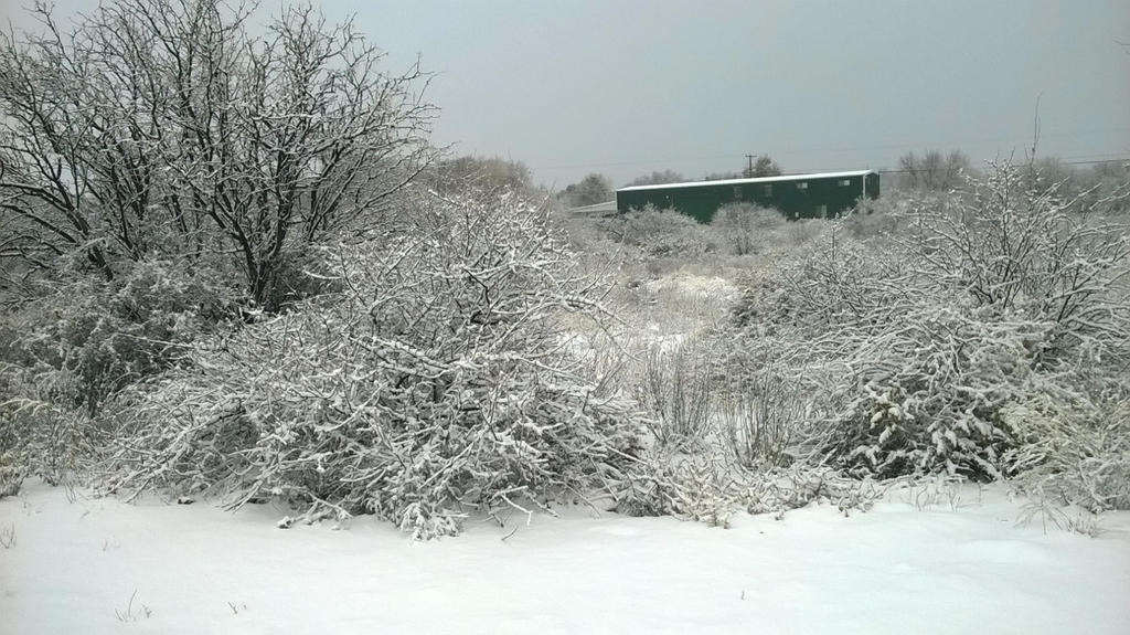 SNOW! by Ashira2112