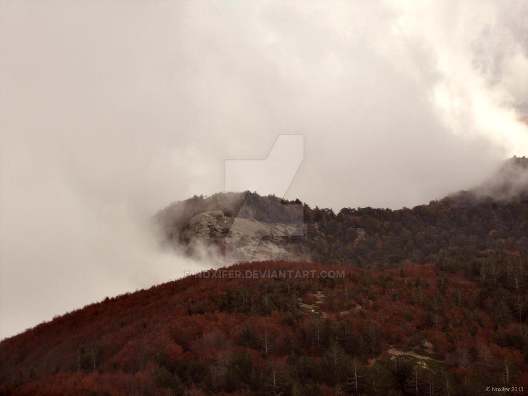 Fog by Noxifer
