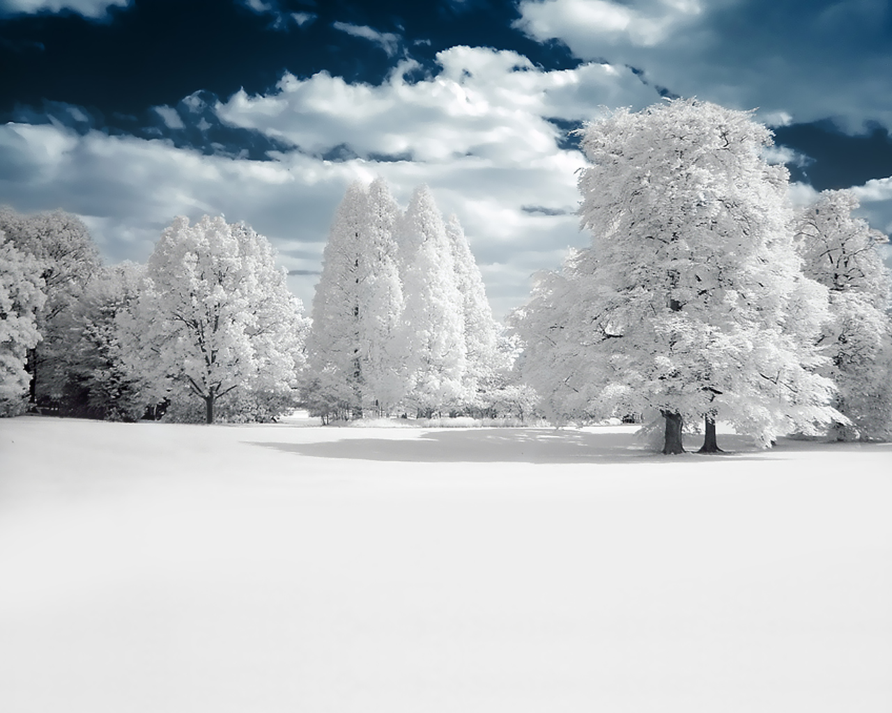 White Summer by SuperSupra