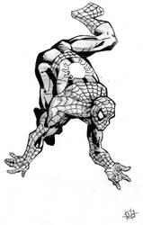 Spiderman by Suez-H3
