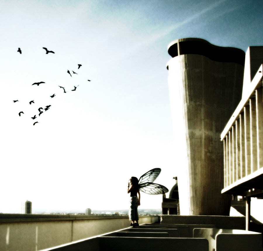 Let's fly away - Version II