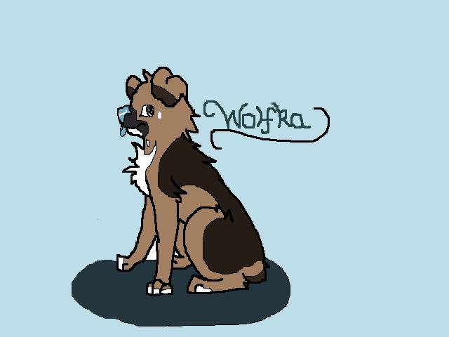 Wolfka -Sketch- by XsilverdawnwarriorX