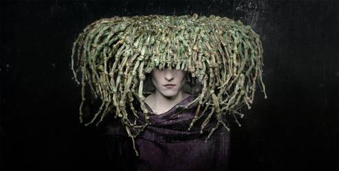 Herbs by Krass62