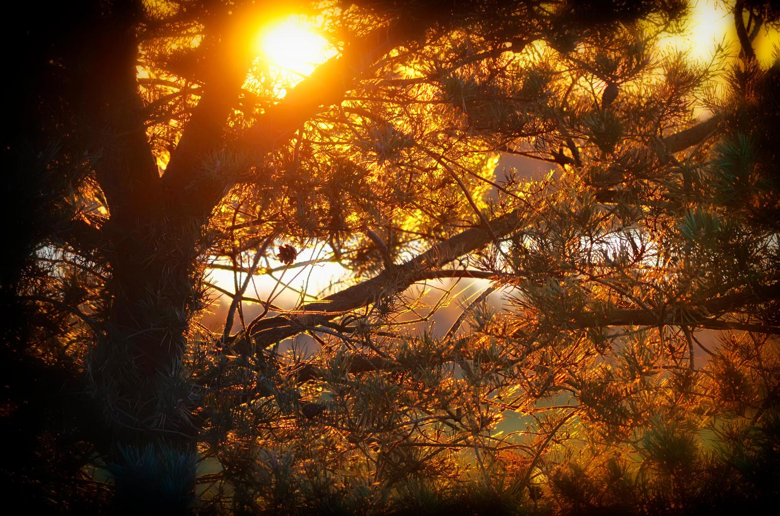 Countryside Sunset #1 by druteika
