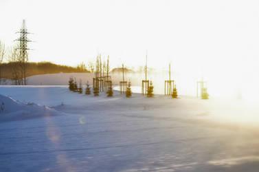 Winter shine by druteika