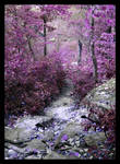 Purple Descent by Hallow2