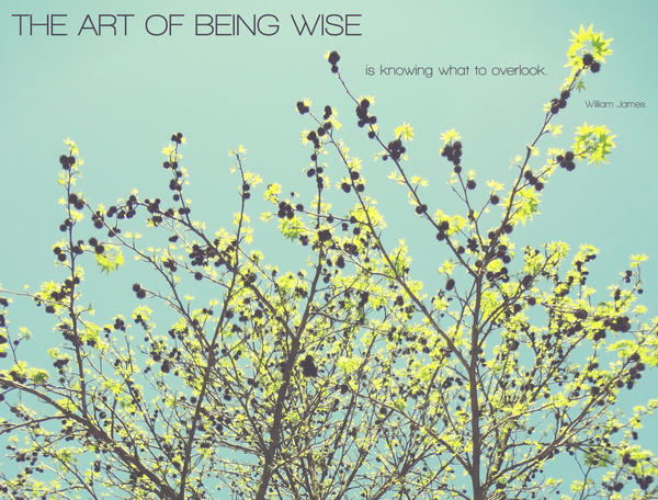 The Art of Being Wise