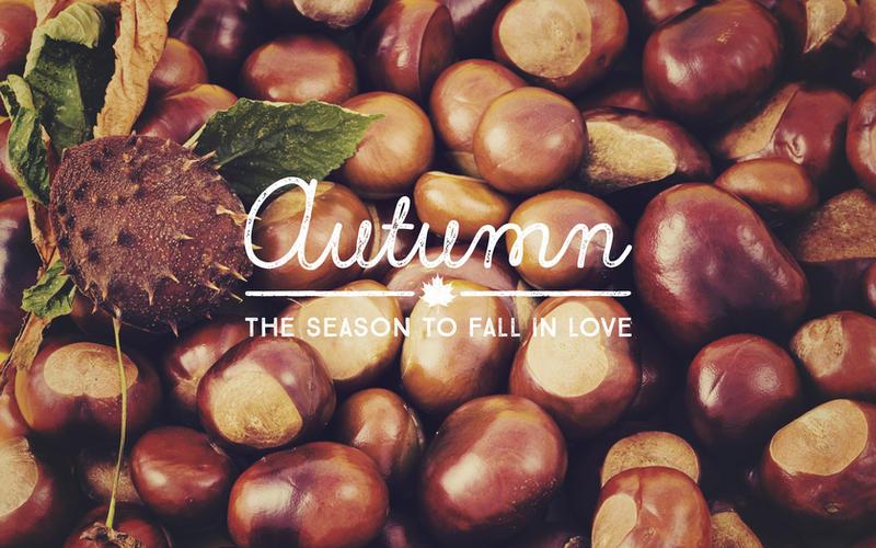 Desktop Wallpaper: Autumn by MysticEmma