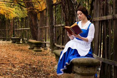 Disney: Belle III by Aigue-Marine