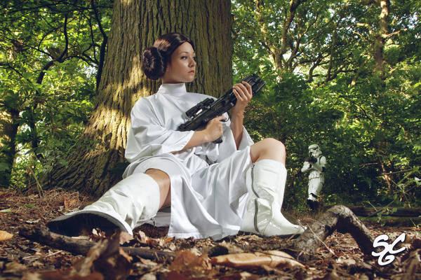 SW: Princess Leia III