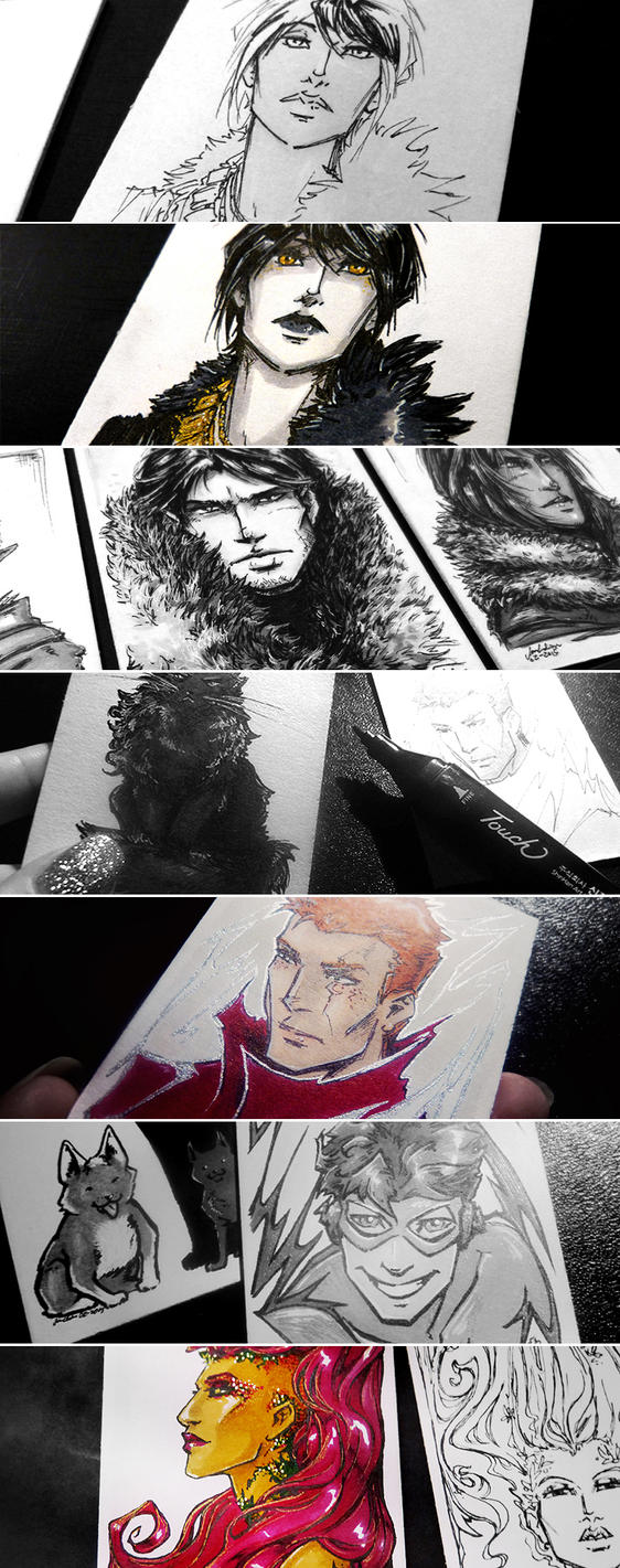 The Great Sketchcard Adventure by croaky