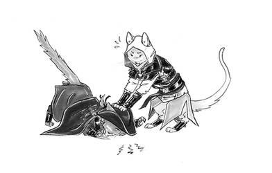 Haytam, NO!! Bad cat