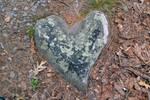 Love You Like a Rock