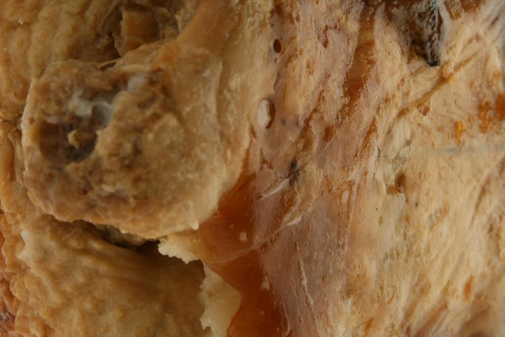 Chicken skin texture5 by faestock
