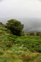 Ring of Kerry9 by faestock