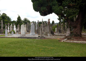 Cemetery2 by faestock
