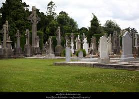 Cemetery3 by faestock