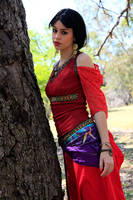 Gypsy Portrait2 by faestock