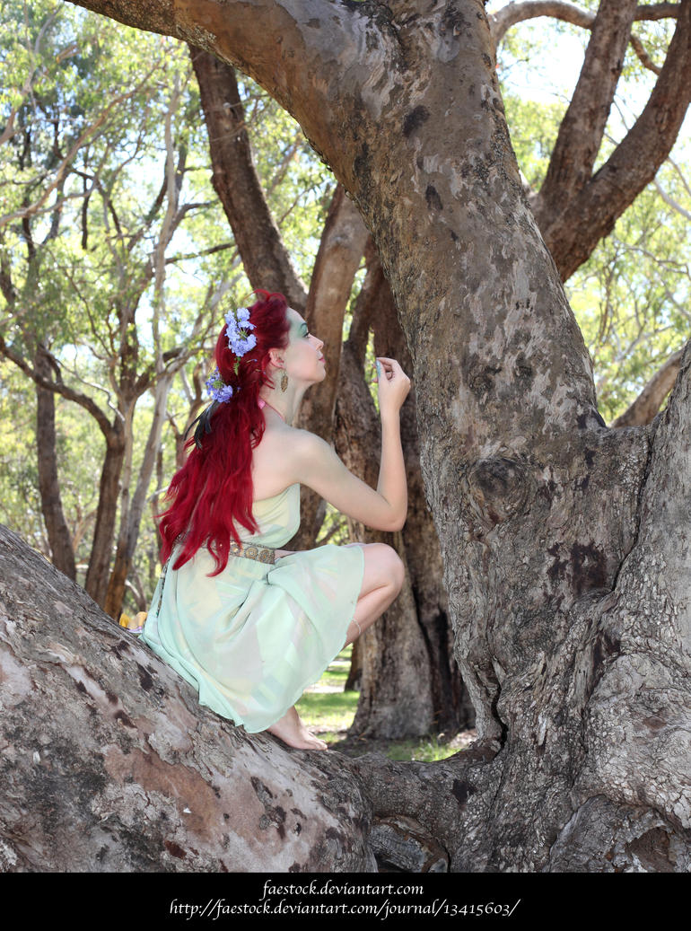 Dryad28 by faestock