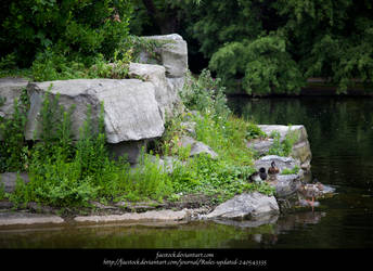Stone Park3 by faestock
