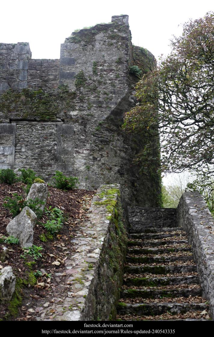 Blarney17 by faestock