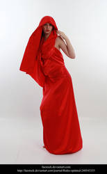 Cardinal 17 by faestock