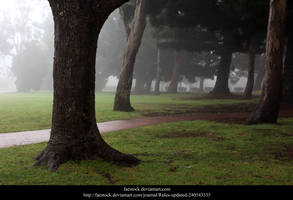 Misty Path2 by faestock