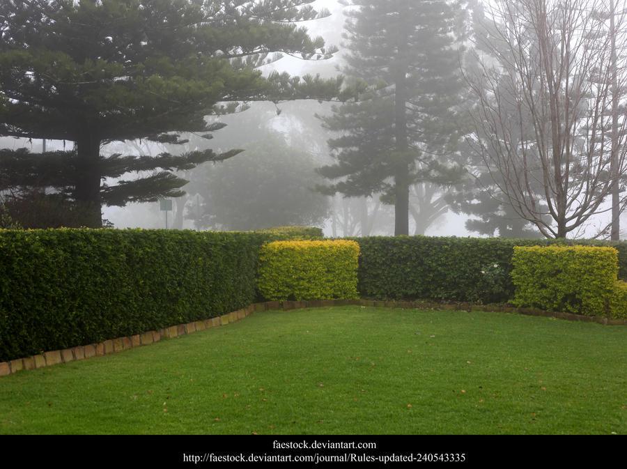 Mist by faestock